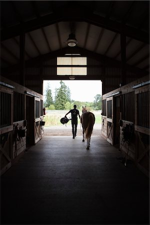 Man Leading Horse out of Stable, Brush Prairie, Washington, USA Stock Photo - Rights-Managed, Code: 700-03407763