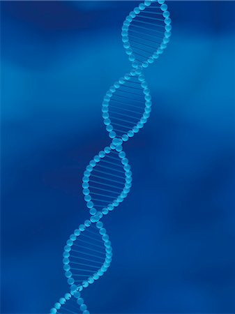DNA Strand Stock Photo - Rights-Managed, Code: 700-03435202