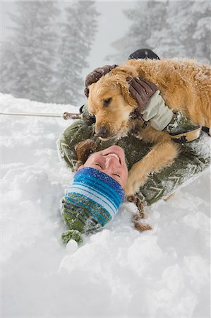 Golden Retriever Licking Woman's Face while Snowshoeing near Steamboat Springs, Colorado, USA Stock Photo - Rights-Managed, Code: 700-03439883