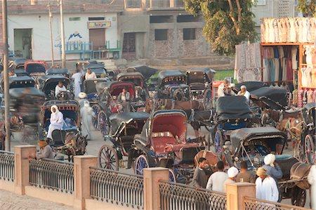 Fiacres, Edfu, Egypt Stock Photo - Rights-Managed, Code: 700-03445991