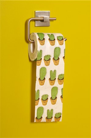Cactus Print Toilet Paper Stock Photo - Rights-Managed, Code: 700-03446038