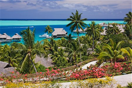 french polynesia - Overview of Resort, Bora Bora Nui Resort, Motu Toopua, Bora Bora, French Polynesia, Oceania Stock Photo - Rights-Managed, Code: 700-03440195