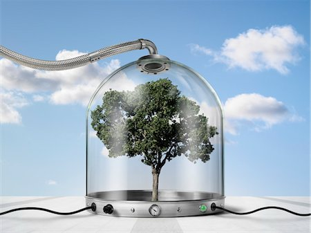 Tree inside Pressurized Glass Dome Stock Photo - Rights-Managed, Code: 700-03466505