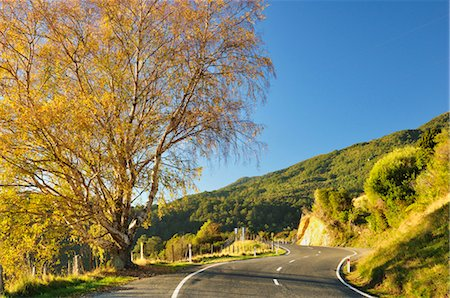 Takaka Hill Highway, Tasman Region, South Island, New Zealand Stock Photo - Rights-Managed, Code: 700-03508414