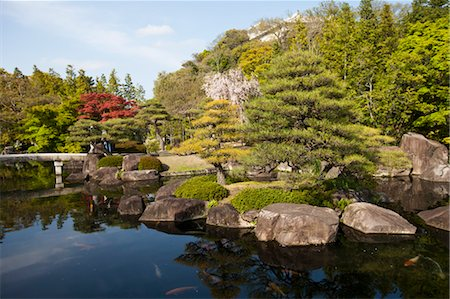 Japanese Garden, Japan Stock Photo - Rights-Managed, Code: 700-03556742