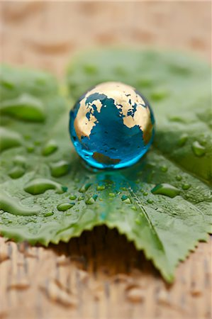 Close-up of Glass Globe on Leaf Stock Photo - Rights-Managed, Code: 700-03553419