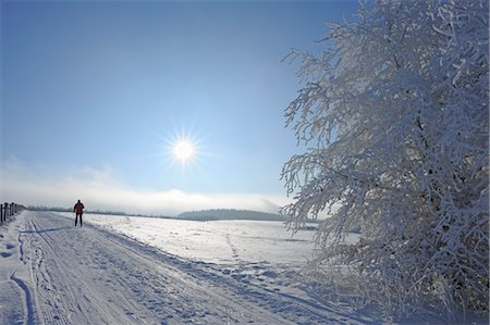Woman Cross Country Skiing, Wasserkuppe, Rhon Mountains, Hesse, Germany Stock Photo - Rights-Managed, Code: 700-03586849