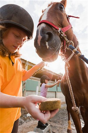 preteen girls bath - Girls Cleaning Horse Stock Photo - Rights-Managed, Code: 700-03601519