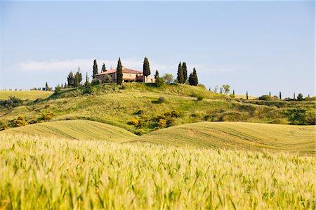 Farmhouse, San Quirico d'Orcia, Tuscany, Italy Stock Photo - Rights-Managed, Code: 700-03622775