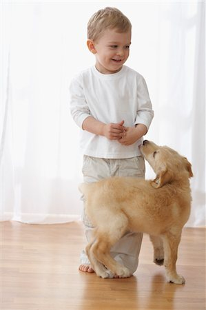 dog lick - Little Boy With Goldendoodle Puppy Stock Photo - Rights-Managed, Code: 700-03644589