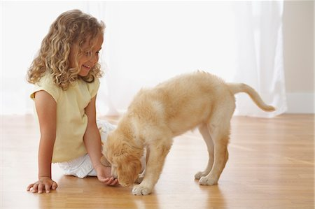 fluffy - Little Girl With Goldendoodle Puppy Stock Photo - Rights-Managed, Code: 700-03644615