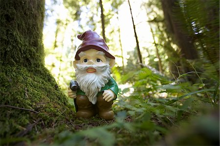 dwarf - Gnome in Forest, Catherdal Grove, MacMillan Provincial Park, Vancouver Island, British Columbia, Canada Stock Photo - Rights-Managed, Code: 700-03685839