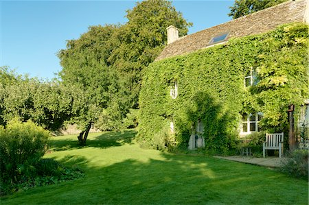quaint house - Old Farmhouse Covered in Green Boston Ivy, Cotswolds, Gloucestershire, England Stock Photo - Rights-Managed, Code: 700-03682424