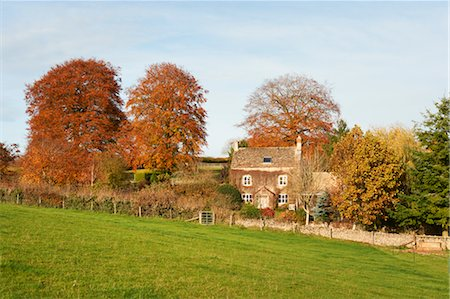 Old Farmhouse Surrounded by Trees in Autumn, Cotswolds, Gloucestershire, England Stock Photo - Rights-Managed, Code: 700-03682439