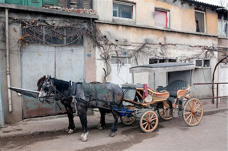 Horse-drawn Carriage, Princes' Island, Istanbul Province, Turkey Stock Photo - Rights-Managed, Code: 700-03682534