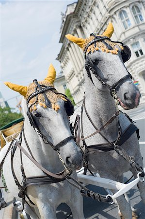 Horses Pulling Wagon Stock Photo - Rights-Managed, Code: 700-03720152