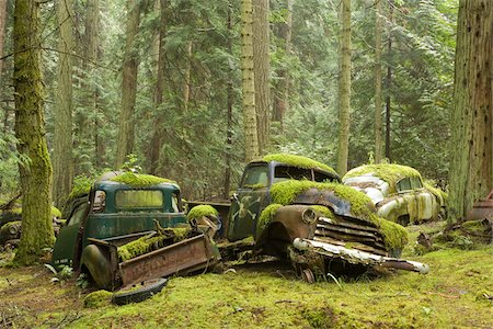 earth no people - Car Graveyard, Valdes Island, British Columbia, Canada Stock Photo - Rights-Managed, Code: 700-03777067