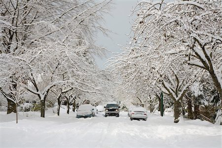 Truck Driving on Snow Covered Street, Dunbar-Southlands Neighbourhood, Vancouver, British Columbia, Canada Stock Photo - Rights-Managed, Code: 700-03805575