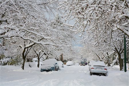 Fresh Snowfall, Dunbar-Southlands Neighbourhood, Vancouver, British Columbia, Canada Stock Photo - Rights-Managed, Code: 700-03805576