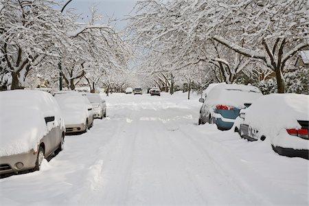 Fresh Snowfall, Dunbar-Southlands Neighbourhood, Vancouver, British Columbia, Canada Stock Photo - Rights-Managed, Code: 700-03805577