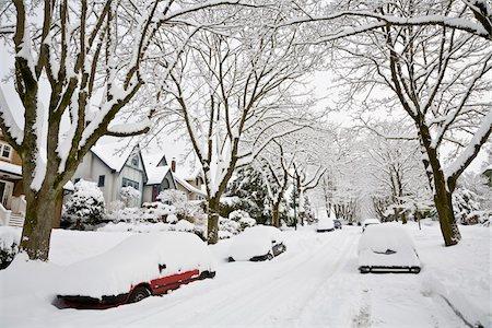 Fresh Snowfall, Dunbar-Southlands Neighbourhood, Vancouver, British Columbia, Canada Stock Photo - Rights-Managed, Code: 700-03805570