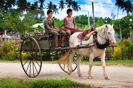 Boys Driving Horse Drawn Cart, Lotofoa, Ha'apai, Kingdom of Tonga Stock Photo - Rights-Managed, Code: 700-03814193