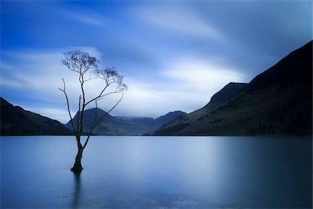 pretty - Lone Tree at Dusk, Lake Buttermere, The Lake District, England Stock Photo - Rights-Managed, Code: 700-03865126