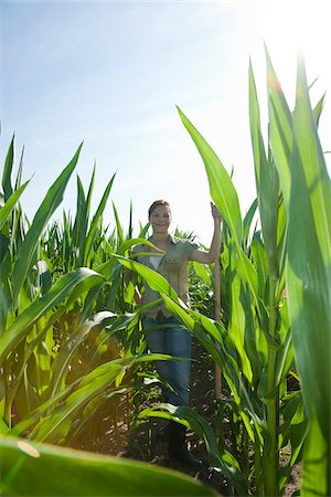 Woman in Corn Field, Mannheim, Baden-Wurttemberg, Germany Stock Photo - Rights-Managed, Code: 700-03891204