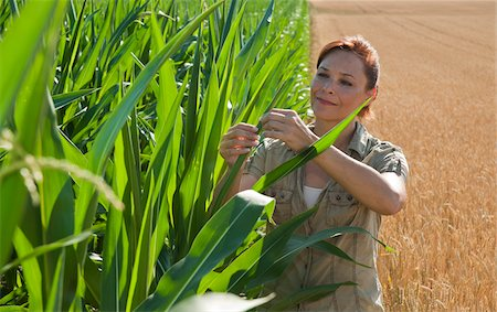 Woman in Corn Field, Mannheim, Baden-Wurttemberg, Germany Stock Photo - Rights-Managed, Code: 700-03891203