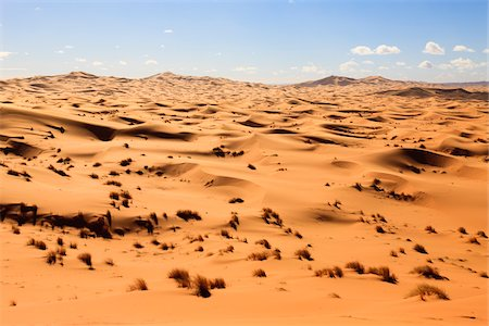 Sand Dunes and Desert Grass,Erg Chebbi, Morocco Stock Photo - Rights-Managed, Code: 700-03958197