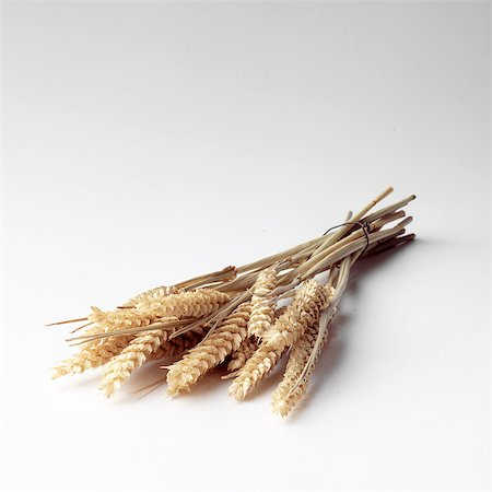 Stalks of Wheat on white Stock Photo - Rights-Managed, Code: 824-06491258
