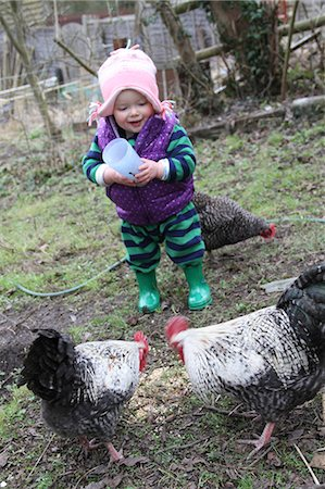Baby girl helping feed chickens in the garden Stock Photo - Rights-Managed, Code: 824-06493345
