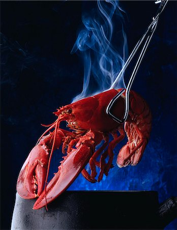 Cooked lobster Stock Photo - Rights-Managed, Code: 824-07193477