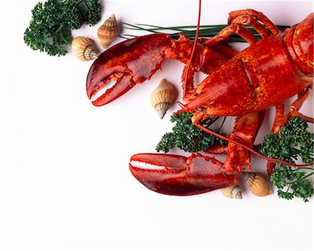 lobster Stock Photo - Rights-Managed, Code: 825-05987169
