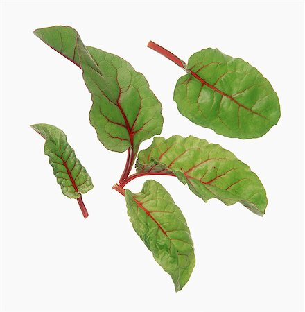 Beetroot leaves Stock Photo - Rights-Managed, Code: 825-07078234