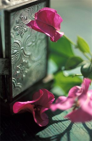 silver box - Decorative flowers and silver box Stock Photo - Rights-Managed, Code: 825-02308207