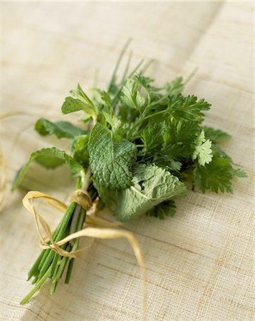 Bunch of mint, coriander and chives Stock Photo - Rights-Managed, Code: 825-03627259