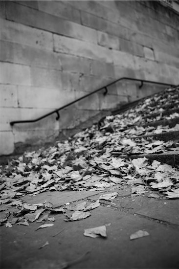 Autumn Leaves on Steps Stock Photo - Premium Rights-Managed, Artist: ableimages, Image code: 822-05948850