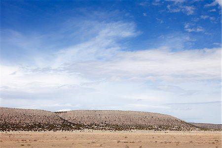Arizona Landscape Stock Photo - Rights-Managed, Code: 822-06302778