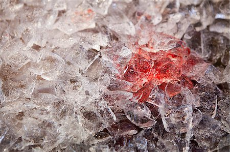 Blood on Melting Ice Cubes, Close-up View Stock Photo - Rights-Managed, Code: 822-06702333
