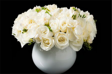 rose - Bouquet of White Roses and Freesia Flowers in a Vase Stock Photo - Rights-Managed, Code: 822-07117366