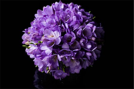 Close up of Purple Freesias Bouquet Stock Photo - Rights-Managed, Code: 822-07117375