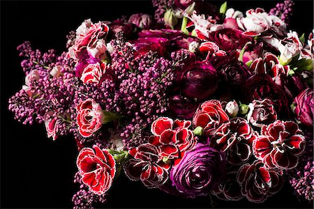 Close up of Bouquet of Flowers Stock Photo - Rights-Managed, Code: 822-07117400