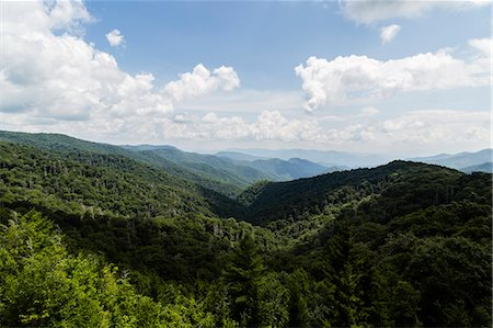 Great Smoky Mountains National Park, USA Stock Photo - Rights-Managed, Code: 822-08630534