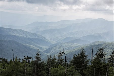 Great Smoky Mountains National Park, USA Stock Photo - Rights-Managed, Code: 822-08630538