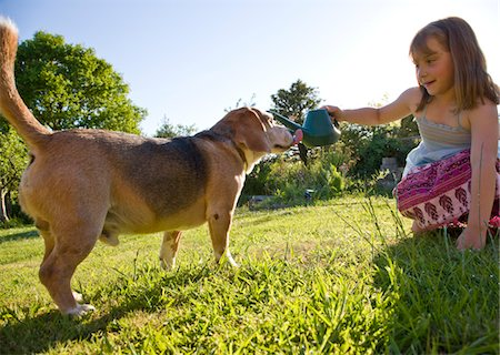 Young Girl Giving Dog Water from a Watering Can Stock Photo - Rights-Managed, Code: 822-03601975