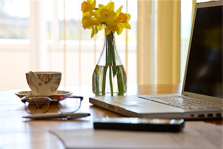 selective focus computer no people - Laptop and Vase of Daffodils on Office Desk Stock Photo - Rights-Managed, Code: 822-03781106