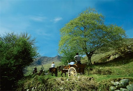 Co Kerry, Killarney, Gap of Dunloe Stock Photo - Rights-Managed, Code: 832-02254101