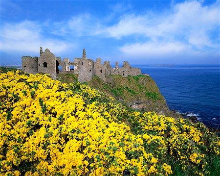 Dunluce Castle, Co. Antrim, Ireland Stock Photo - Rights-Managed, Code: 832-02252653