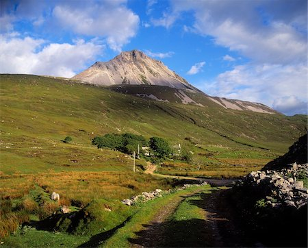 Mount Errigal, Near Gweedore, Co Donegal, Ireland Stock Photo - Rights-Managed, Code: 832-03232171